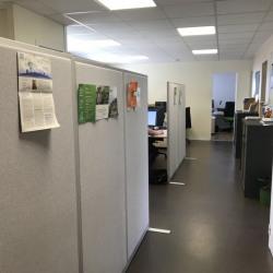 Location Bureau Balma 220 m²