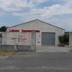 Vente Local d'activités Marguerittes (30320)
