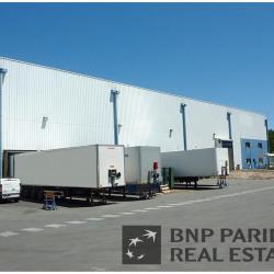 Vente Entrepôt Cestas 5770 m²