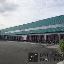 Location Entrepôt Louailles 12645 m²