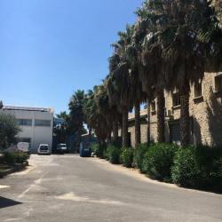 Location Bureau Marseille 10ème 160 m²