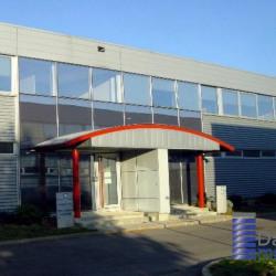 Location Entrepôt Sucy-en-Brie 519 m²