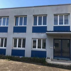 Location Local d'activités Décines-Charpieu 0 m²