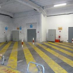 Location Entrepôt Lyon 1er 80 m²