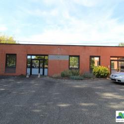 Location Bureau Ramonville-Saint-Agne 295 m²