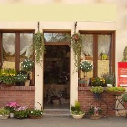 Vente Local commercial Chartres 150 m²