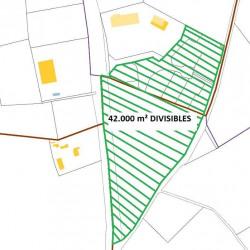 Vente Terrain Garons 42000 m²