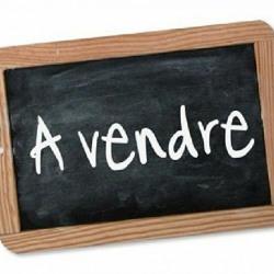 Vente Entrepôt Clermont-Ferrand 150 m²