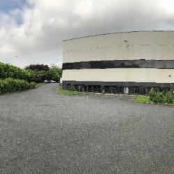 Vente Entrepôt Émerainville (77184)
