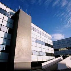 Location Bureau Montpellier Hrault 34 180647 m Rfrence N