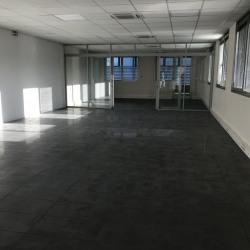 Location Bureau Mulhouse 255 m²