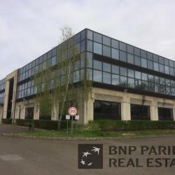 Location Local d'activités Argenteuil 3648 m²