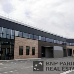 Location Local d'activités Sucy-en-Brie (94370)