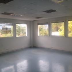 Location Bureau Crolles 300 m²