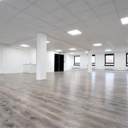 Location Bureau Lyon 3ème 160 m²