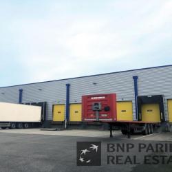 Location Local d'activités Castelnau-d'Estrétefonds 2150 m²