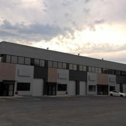 Vente Local d'activités Lisses 244 m²