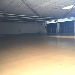 Location Local commercial Saint-Alban (31140)
