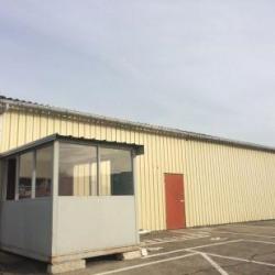 Location Local d'activités Saint-Jean-de-Braye 200 m²