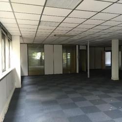 Location Local commercial Les Ulis 624 m²