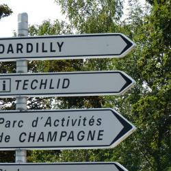 Location Entrepôt Dardilly 172 m²