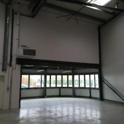 Location Local d'activités Moissy-Cramayel 295 m²