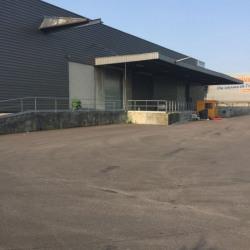Location Local d'activités Le Blanc-Mesnil 3480 m²