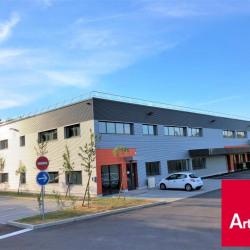 Vente Local d'activités Longvic 313,17 m²