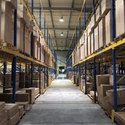 Vente Entrepôt Lagny-sur-Marne 9300 m²