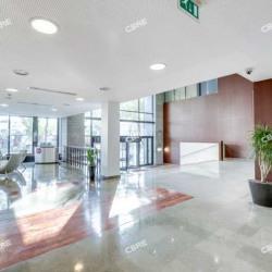 Location Bureau La Plaine Saint Denis 927 m²