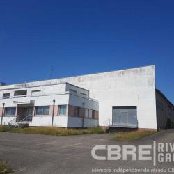 Vente Entrepôt Brumath 2914 m²