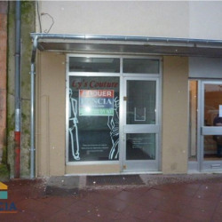 Location Local commercial Sarrebourg 43 m²