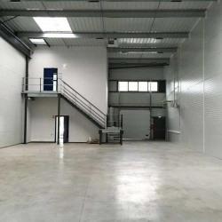 Location Local d'activités Lesquin 349 m²