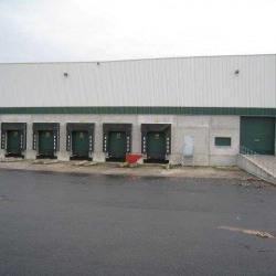 Location Entrepôt Pierrelaye 4957 m²