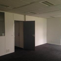 Location Bureau Saint-Thibault-des-Vignes 438 m²