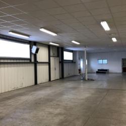 Location Local d'activités Vitry-sur-Seine 200 m²