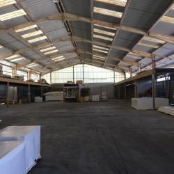 Location Entrepôt Rochefort-du-Gard 2390 m²