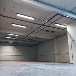 Location Local d'activités Lognes 236 m²