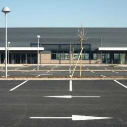 Vente Local d'activités Saint-Bonnet-de-Mure 463,6 m²