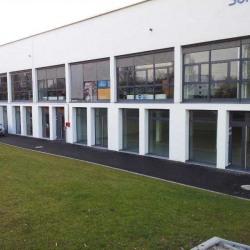 Vente Bureau Illkirch-Graffenstaden 314 m²