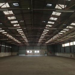 Location Local d'activités Saint-Jean-de-Védas 2200 m²