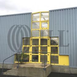 Location Local d'activités Boissy-sous-Saint-Yon 260 m²