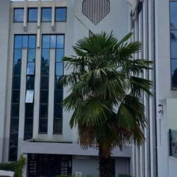 Vente Bureau Nice (06200)