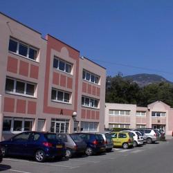 Vente Bureau Sassenage 551 m²
