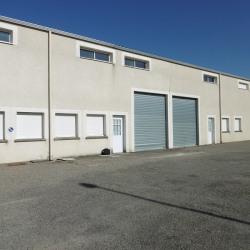 Location Local d'activités Montech 300 m²