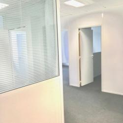 Location Bureau Ivry-sur-Seine 154 m²
