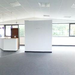 Location Local d'activités Vannes 260 m²