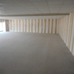 Vente Local commercial Roques 300 m²
