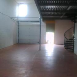 Location Local d'activités Vaulx-en-Velin 230 m²