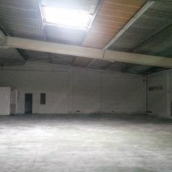Location Local d'activités Montpellier 2000 m²